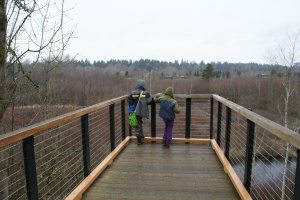 Mercer Slough, Kids in nature, hiking with kids