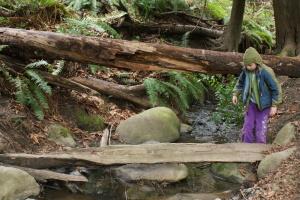 Kids in Nature, Mercer Slough, Stream Play