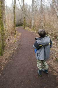 Mercer Slough, Hike with kids, urban hikes