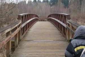 bridge, mercer slough, kids in nature, urban nature walk