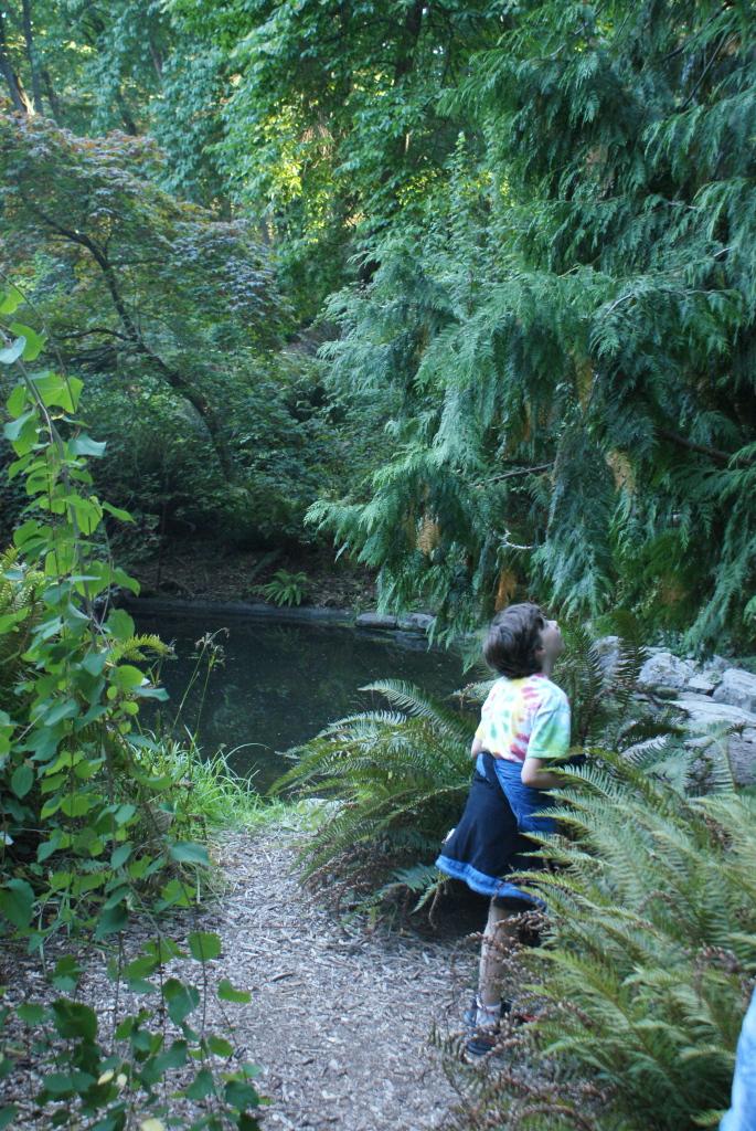 kids in nature, seattle arboretum, music of trees, art in nature