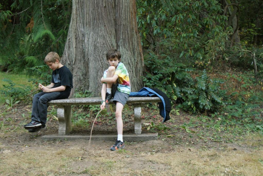 washington park arboretum, music of trees, art in nature, kids in nature